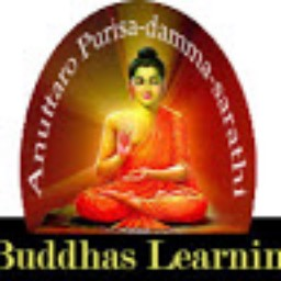 Buddhas Learning