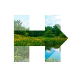 Hillary for WI