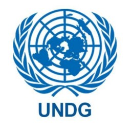 UN Development Group