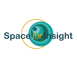 Space for Insight