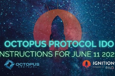 Octopus Protocol: Winners and IDO Details