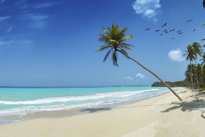 $3.8bn in UK aid for developing states 'routed through tax havens'