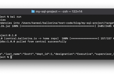 Connecting to and using Google's Cloud SQL with Ballerina