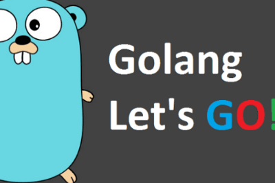 Why Choose Golang For Your Next Web Application Project?