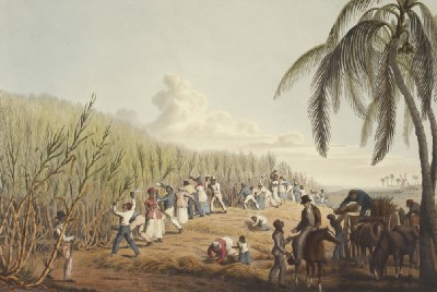 An Overview and History of Common Types of Slavery