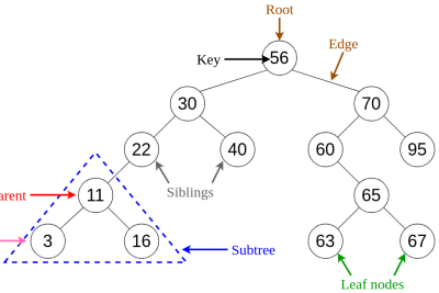 Analysis and Applications of the Tree Data Structure