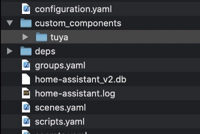 Develop Tuya-Compatible Home Assistant Drivers