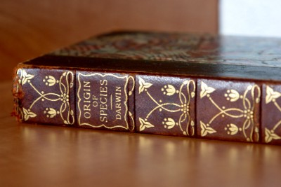 """Charles Darwin Publishes """"The Origin of Species"""", 1859"""