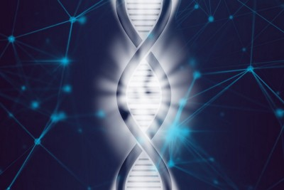 Natural Longevity: Genetic Insights from Long-Lived Animals