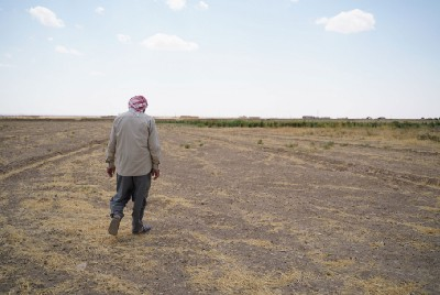 Drought in Iraq and Syria could totally collapse food system for millions
