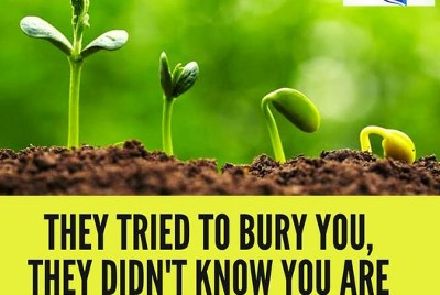 They Tried To Bury You, They Didn't Know You Are ASeed!