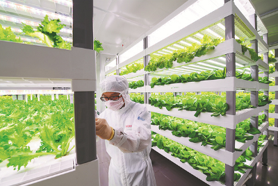 Future of food: What's there to innovate next?