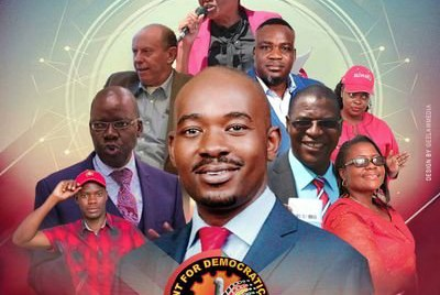 Why the MDC might be bad for the struggle?