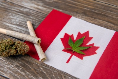 State of Canadian Cannabis
