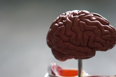 Ten Ways To Take Care Of Your Brain