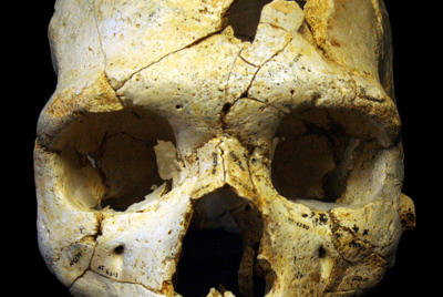 CSI Paleolithic—The First Murder Ever
