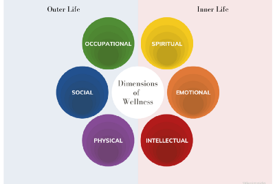 Inside Your Dimensions of Wellness—alexis maida