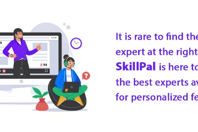 How can a SkillPal mentor help in entrepreneurship and small business?