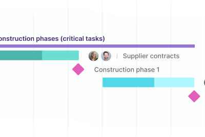 Real-Life Examples of Project Milestones