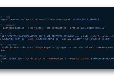 Guest Post: Expo & React Native at Payright—Part 2