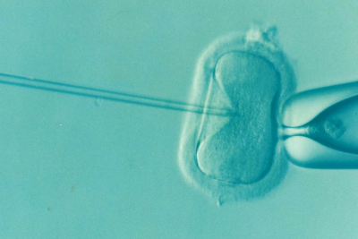 Six things IVF made me realize