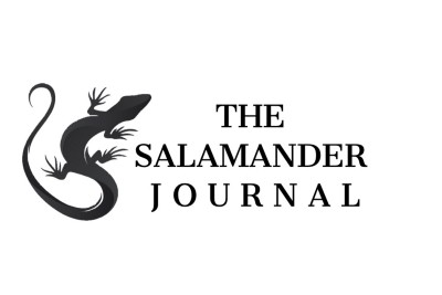 Submission Guidelines for The Salamander