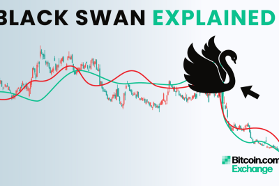 What's a Black Swan?
