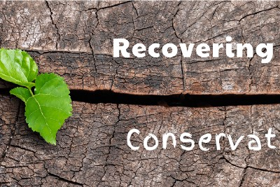 Recovering from Conservatism—Part One—Pro…?