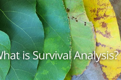 What is Survival Analysis? (or time-to-event)