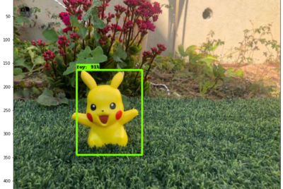 How to retrain an object detection model with a custom training set