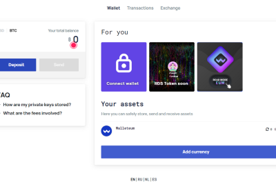 Walleteum: The New Economy Business Wallet for Future