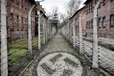 School Administrator Tells Teachers To Offer 'Opposing' Viewpoints On Holocaust