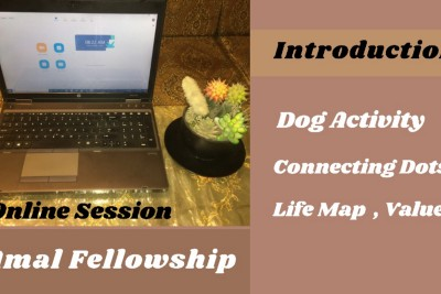 First Two Weeks Experience at Amal Fellowship