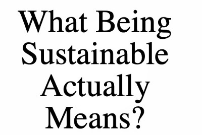 What Being Sustainable Actually Means?