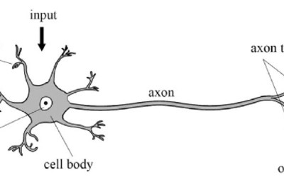 An Introduction to Artificial Neural Networks