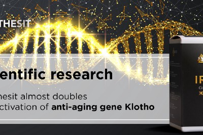 Synthesit almost doubles the activation of anti-aging gene Klotho