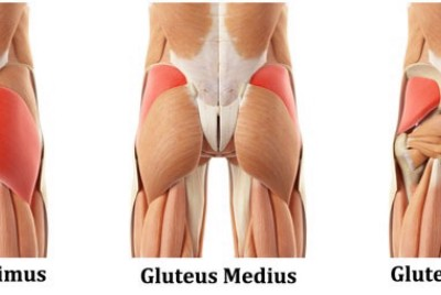 Are athletes training glutes too much?