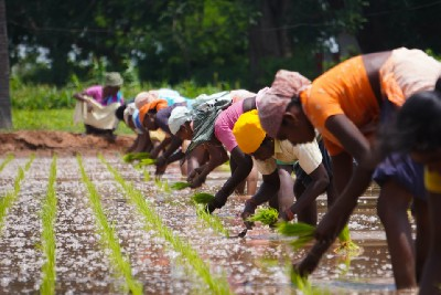 Farmers laws in India 2020—The Truth