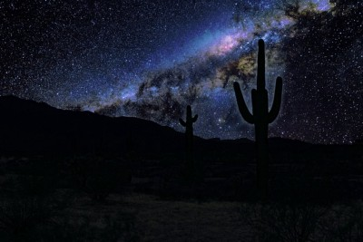 Scary Stories: What's Beyond Your Flashlight Beam in the Desert?
