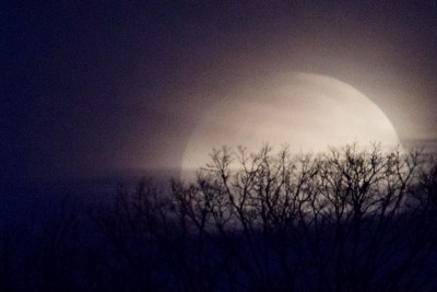 Aligning One's Body and Mind with the Monthly Moon Cycle