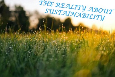 The Reality About Sustainability