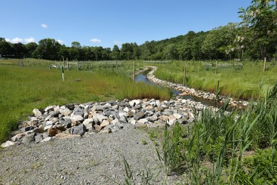 From Bowling Alley to Wetland