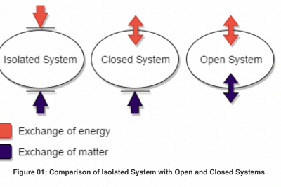 A Synoptic View on System, Reality, Causality, and Scientific Explanation