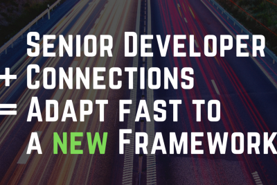 How fast can a Senior developer adapt to a new language or framework?
