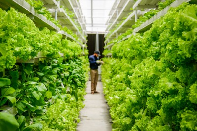 Food security and sustainability: impact investing in its truest form