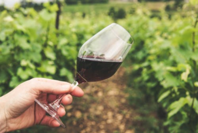 Predicting Wine Quality with Machine Learning