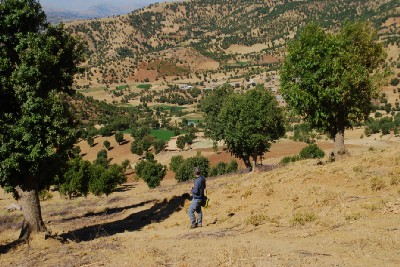Sacred Groves as a Safe Shelter for Biodiversity and Culture in Kurdistan