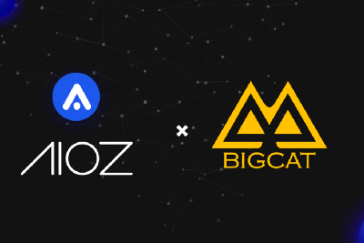 AIOZ Network partners with Big Cat Entertainment