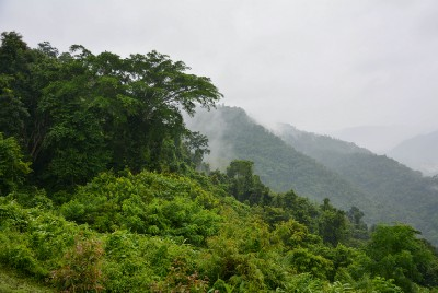 Hiking Adventures in Chiang Dao, Northern Thailand