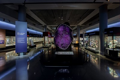 Reimagined for the Future: American Museum of Natural History's Allison and Roberto Mignone Halls…